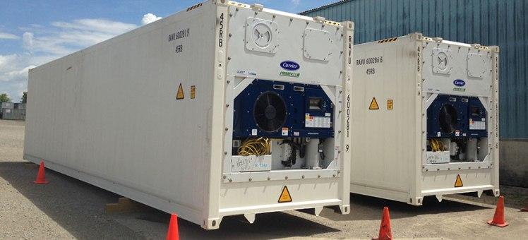 Dịch vụ vận chuyển container lạnh xuất nhập khẩu