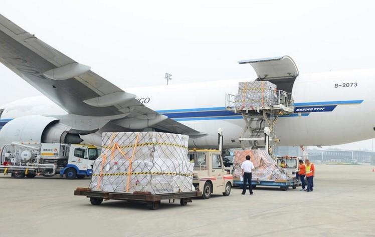 Dịch vụ vận chuyển hàng hóa xuất nhập khẩu