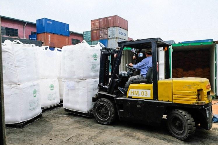 Hàng hóa xuất nhập khẩu bằng container đường biển